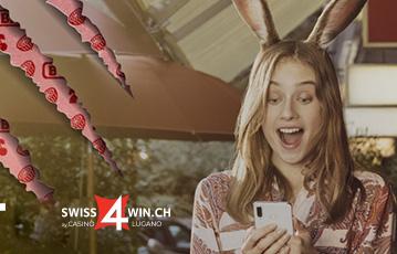 Swiss4Win Erfahrungen und Test
