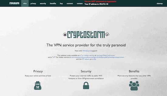 CryptoStorm VPN Erfahrungen und Test